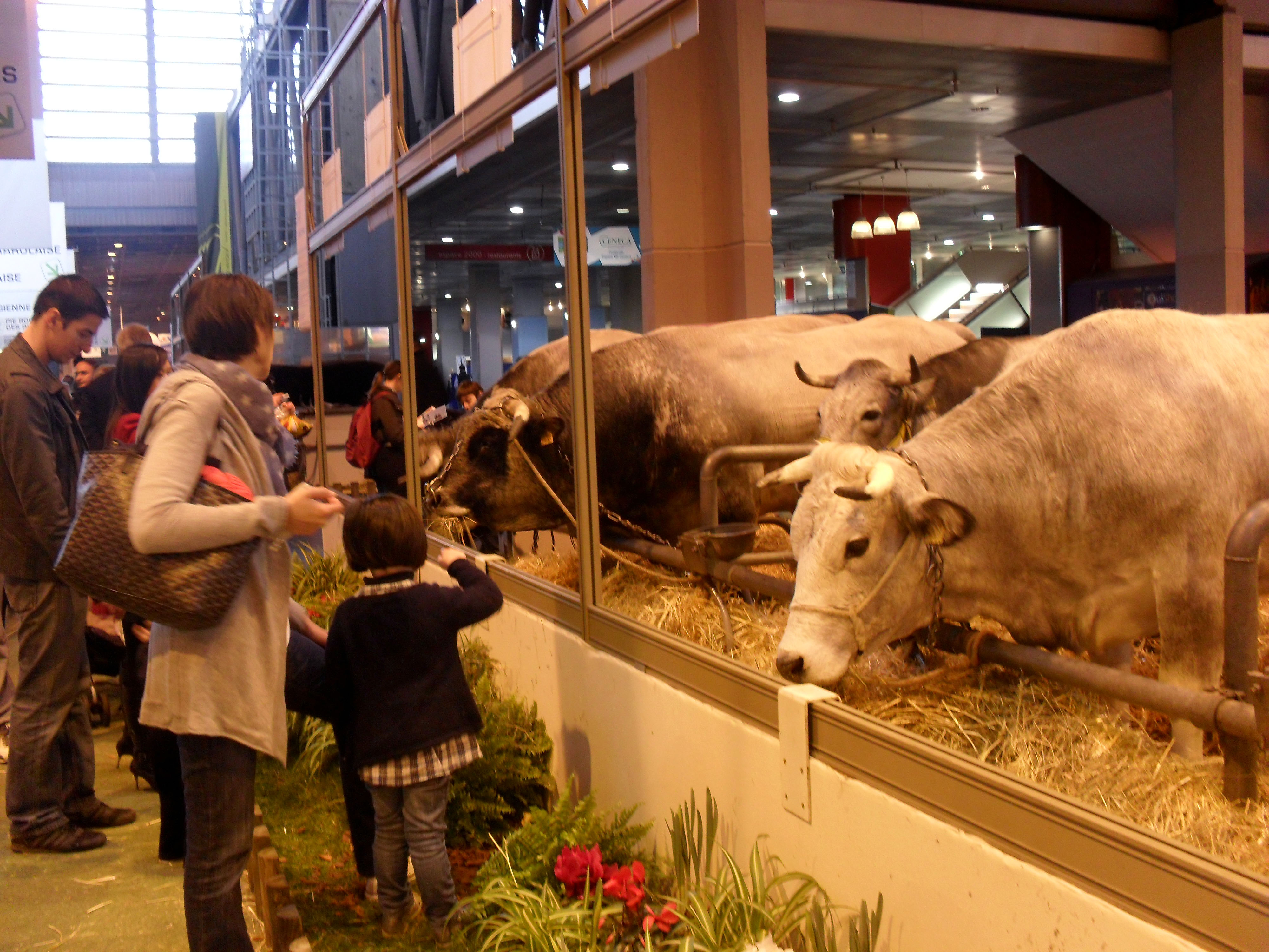 France jolie paris - Salon de l agriculture place ...